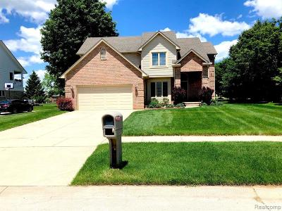 Chesterfield  Single Family Home For Sale: 26917 Christy Dr