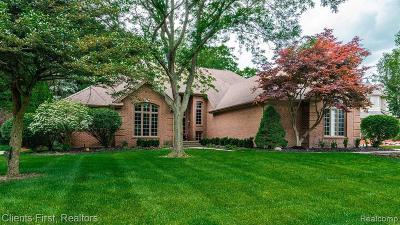 Farmington Hills Single Family Home For Sale: 27227 Hampstead Blvd