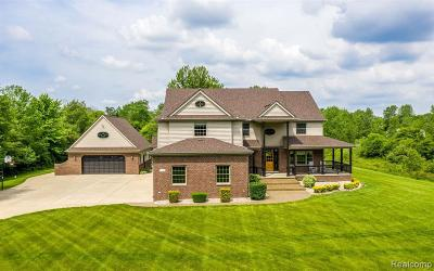 Lapeer Single Family Home For Sale: 5234 Blue Heron Dr
