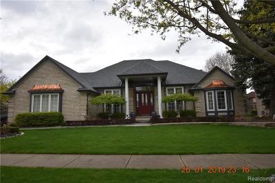Macomb Single Family Home For Sale: 13715 Ironwood