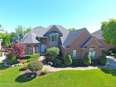 Rochester Hills Single Family Home For Sale: 1174 Rochelle Park Dr