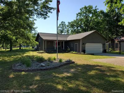 Lapeer Single Family Home For Sale: 3519 Hannaman Rd