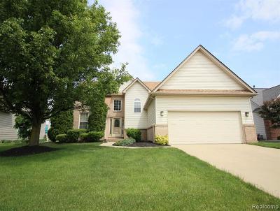 Macomb Single Family Home For Sale: 34655 Golden Oak Ln