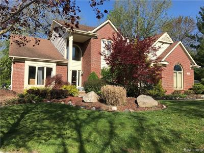West Bloomfield Single Family Home For Sale: 7684 Watford