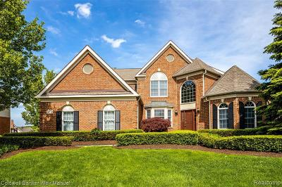 Oakland Single Family Home For Sale: 24570 Terra Del Mar Dr