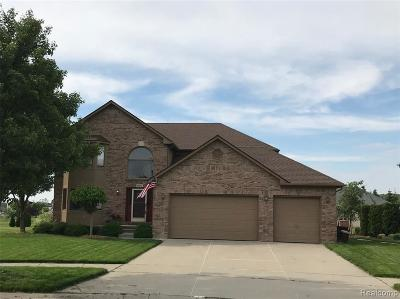 Macomb Single Family Home For Sale: 50617 Plaza
