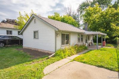 Macomb Single Family Home For Sale: 23090 Rein Ave