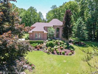 Macomb Single Family Home For Sale: 5366 Lockwood Dr