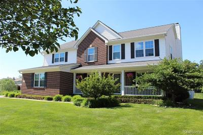 Clinton Township Single Family Home For Sale: 15531 Brookstone Dr
