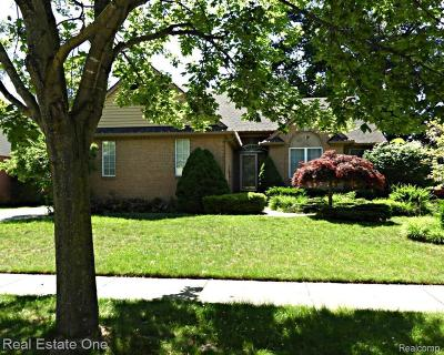 Westland Single Family Home For Sale: 8037 Tom Brown Dr