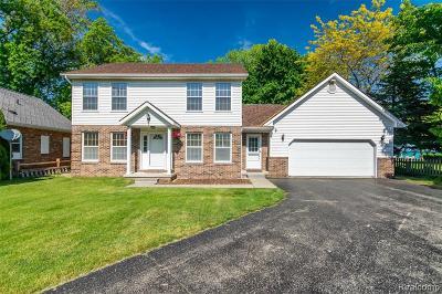 Burtchville Single Family Home For Sale: 8752 Lakeshore Rd