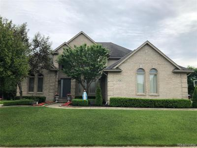 Shelby Twp Single Family Home For Sale: 7156 Vista Dr