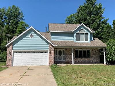Fort Gratiot Single Family Home For Sale: 3945 State Rd