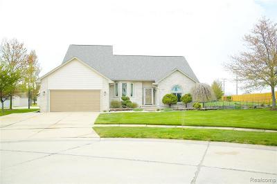 Fraser Single Family Home For Sale: 34507 Kingsway Crt