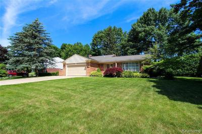 Northville Single Family Home For Sale: 42232 Old Bedford Rd