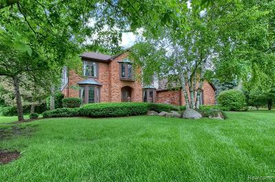 Bloomfield Hills Single Family Home For Sale: 1703 Brandywine Dr