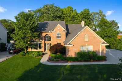 Shelby Twp Single Family Home For Sale: 49192 Sandra Dr