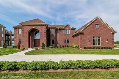 Detroit Single Family Home For Sale: 26 Sand Bar Ln