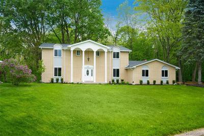 Clinton Township Single Family Home For Sale: 19901 S Riverhill Dr