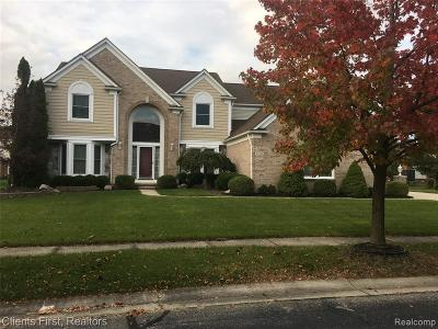 Canton Single Family Home For Sale: 45996 Windridge Ln