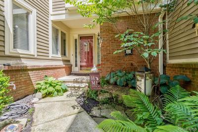 Northville Condo/Townhouse For Sale: 306 Buchner Hill Dr