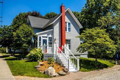 Northville Single Family Home For Sale: 426 Butler St