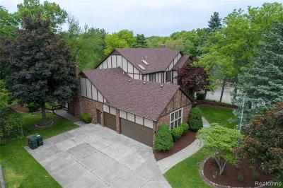 Rochester Hills Single Family Home For Sale: 2932 River Trail Dr