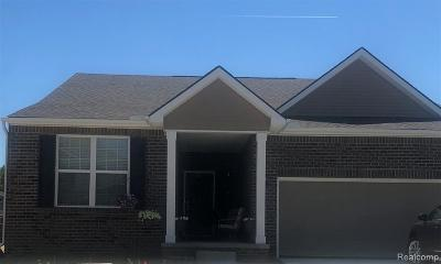 Westland Single Family Home For Sale: 8450 Quincy Dr