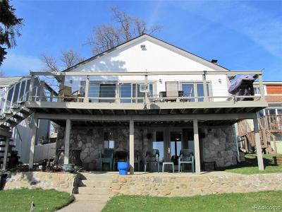 Lake Orion Single Family Home For Sale: 843 Pine Tree Rd W Rd W