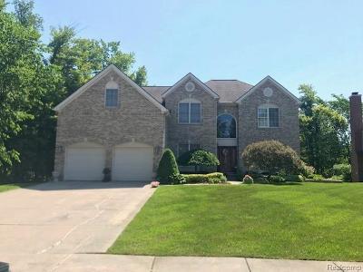 Lake Orion Single Family Home For Sale: 2922 Riverside Dr