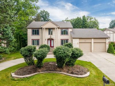 Rochester Hills Single Family Home For Sale: 2848 River Trail Dr
