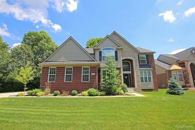 Lake Orion Single Family Home For Sale: 401 Greenan Ln