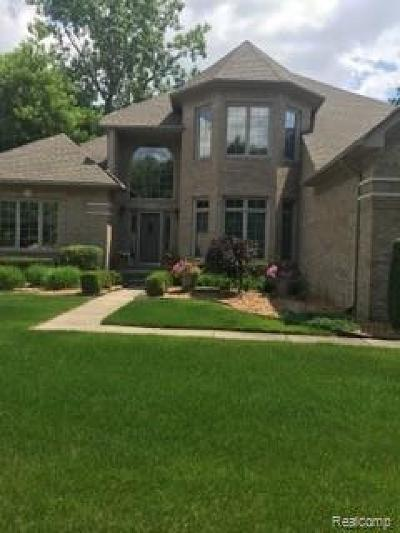Shelby Twp Single Family Home For Sale: 50864 Otter Creek Drive Dr