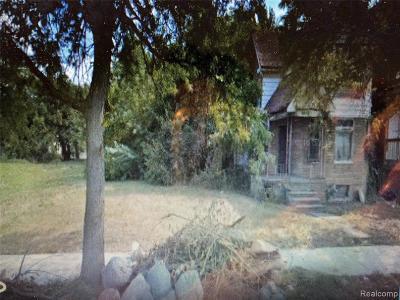 Detroit Residential Lots & Land For Sale: 558 Holbrook St