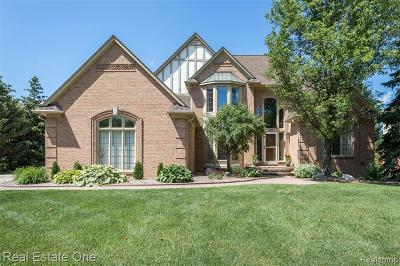 Troy Single Family Home For Sale: 1638 Picadilly Dr