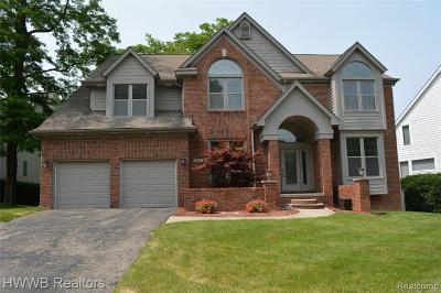 West Bloomfield Single Family Home For Sale: 2710 Elizabeth Ln