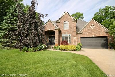 West Bloomfield Single Family Home For Sale: 5630 Swan St
