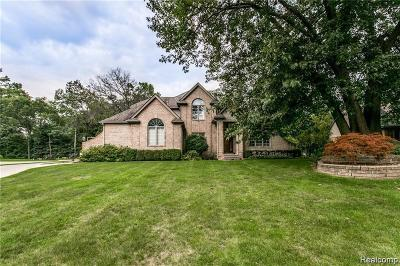 Fort Gratiot Single Family Home For Sale: 2625 Whitney Plc