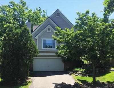 Clarkston Condo/Townhouse For Sale: 7346 Chipmunk Hollow