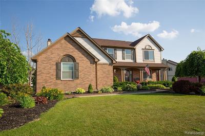 Lake Orion Single Family Home For Sale: 2121 Chestnut Cir