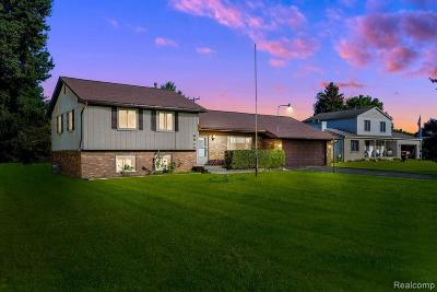 Clarkston Single Family Home For Sale: 6940 Walters Rd
