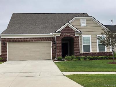 Auburn Hills Condo/Townhouse For Sale: 3003 Sumerlyn Crt
