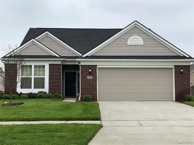 Auburn Hills Condo/Townhouse For Sale: 3005 Sumerlyn Crt