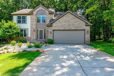 Lake Orion Single Family Home For Sale: 1250 Walloon Way