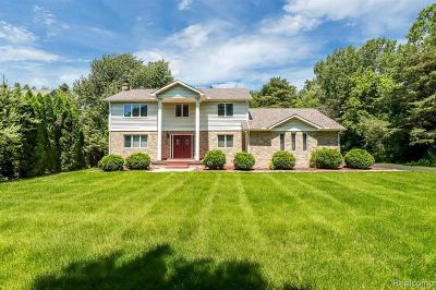 Auburn Hills Single Family Home For Sale: 3569 South Blvd