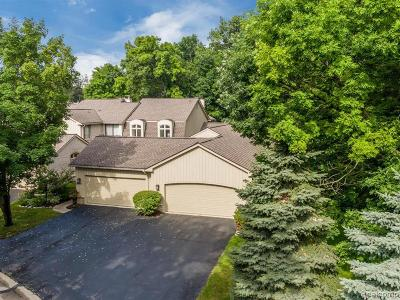 Bloomfield Hills Condo/Townhouse For Sale: 1141 Timberview Trl