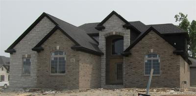 Shelby Twp Single Family Home For Sale: 8904 Springer Lane