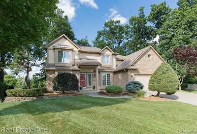 Lake Orion Single Family Home For Sale: 4095 Bandury Dr