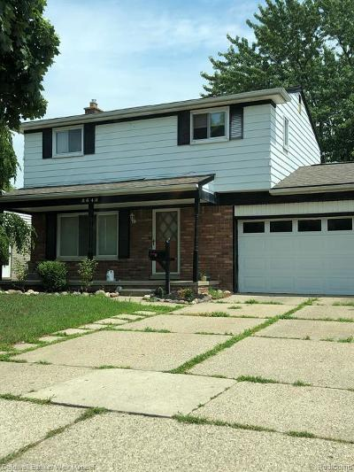 Canton Single Family Home For Sale: 8648 Holly Dr