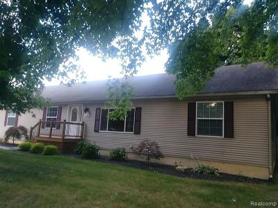 Rochester Hills Single Family Home For Sale: 3143 Greenwood Dr